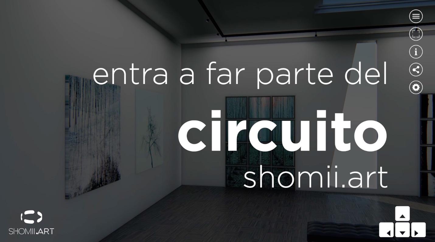 video presentazione shomii-art